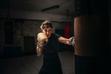 Boxer Training With Sandbag In Gym
