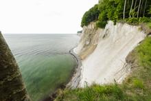 Landscape With Trees On The Edge Of Coastal Chalk Cliffs, Jasmund National Park, Sassnitz, Rugen, Mecklenburg-Vorpommern, Germany