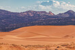 canvas print picture - coral pink sand dunes state park