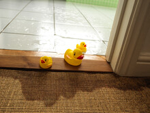 Water Leaking From Bathroom Appliance Causing Damage And Washing Rubber Ducks Out Of Door
