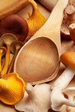Wild Mushrooms And Wooden Ladle, Albatrellus Ovinus, Cantharellus Cibarius, Cantharellus Tubaeformis, Lactarius Rufus, And Russula Decolorans