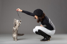 Studio Shot Of Woman Playing With Grey Cat, On Grey Background.