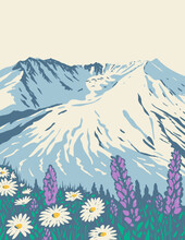 WPA Poster Art Of Mount St. Helens National Volcanic Monument Within Gifford Pinchot National Forest In Washington State Done In Works Project Administration Style Style Or Federal Art Project Style.