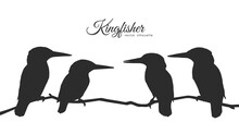 Vector Silhouette Of A Flock Of Kingfishers Sitting On A Dry Branch.