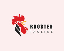 Rooster Logo Head Rooster Logo Animal Creative Design