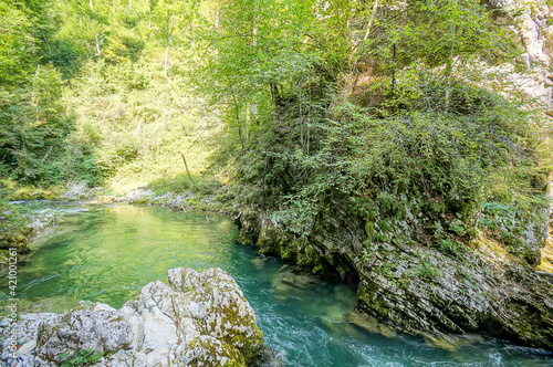 Papel de parede river in forest, digital photo picture as a background , taken in bled lake area