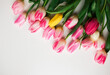 canvas print picture - Pink fresh tulips flowers on white background