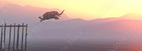 Fototapeta Jump elephant obraz