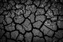 The Dark Ground Is Dried And Cracks Background. The Black Soil Dry Land Cracked Ground Surface. Landscape, Poor Soil.