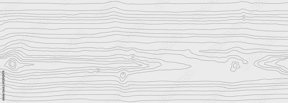 Fototapeta Wood grain white gray texture. Seamless wooden pattern. Abstract line background. Tree fiber vector illustration
