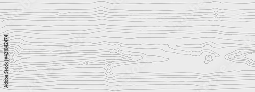 Obraz Wood grain white gray texture. Seamless wooden pattern. Abstract line background. Tree fiber vector illustration - fototapety do salonu