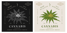 Cannabis Flower Plant Retro Vintage Illustration Logo Template