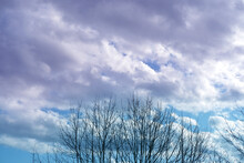 Blue Spring Sky, White Clouds Are Flying, Birds, Thin Branches Of A Tree Sway In The Wind, A Dark Rain Cloud Comes, Concept Of A Spring Day, Rain, Windy Weather