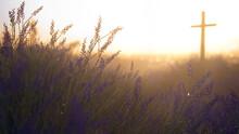 Cross In A Meadow Of Wildflowers