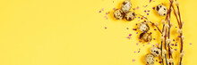 The Beautiful Easter Composition Of The Willow Branches And Quail Eggs On The Yellow Background With The Purple Blue Dried Petals Of The Everlasting Flower And The Copy Space For Your Text, Banner.