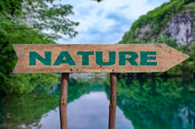 Nature Wooden Arrow Road Sign Against Lake And Forest Background.