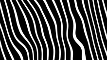 White And Black Lines Background