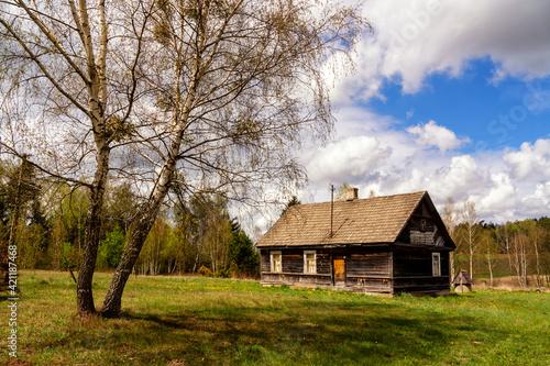 Fototapeta Wiosna na Wzgórzach Sokólskich, Podlasie, Polska obraz