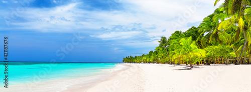 Fototapeta Panorama of white sandy beach with coconut palm trees in Caribbean sea, Dominican Republic. obraz