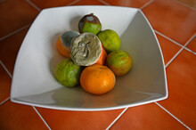 Citrus Fruit In Various Stages Of Decomposition. In White Bowl On Orange Tiled Table. Fruit Is Limes And Clementines. Mould, Bruising And Discolouration. Selective Focus.