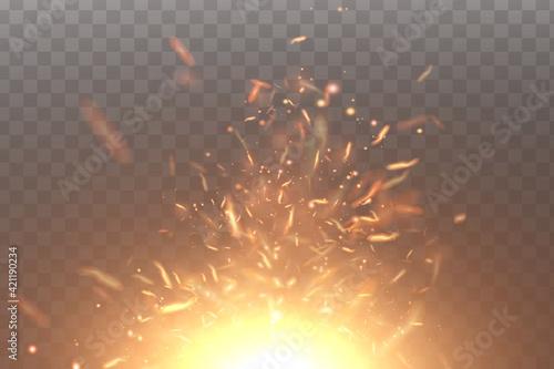 Fotografie, Obraz Burning fiery sparks. Sparks of fire.Vector.