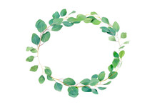 Floral Oval Frame, Eucalyptus Leaves On White Background. Wreath Made Of Eucalyptus Branches. Flat Lay, Top View With Copyspace For Text. Minimal Botanical Design