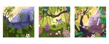 Magic Rainforest Compositions Set