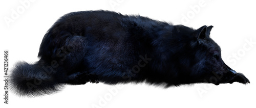 Foto 3D Rendering Black Wolf on White