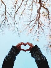 Cropped Hands Of Woman Making Heart Shape Against Tree And Sky