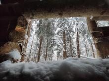 Cabane En Forêt Enneigé