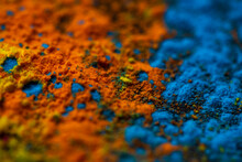Close-up Of Holi