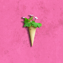 Flat Lay Of Fresh Flowers In Ice Cream Waffle Cone On Grunge Pink Background