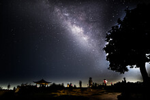 Low Angle View Of Silhouette Trees Against Milky-way Sky At Night