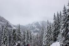 Paisaje De Montaña En Estacion De Invierrno. Con Mucha Nieve