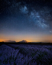 Scenic View Of Lavender Field Against Sky At Night