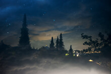 Night Scene With Coniferous Trees Under A Cloudy Starry Sky And Illuminated Houses In The Distance.