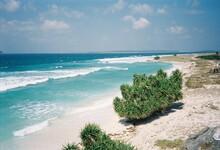 Beachview Like No Other