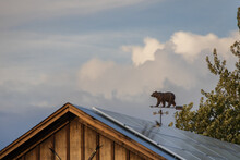 Bear-shaped Weather Vane With Storm Clouds In Background