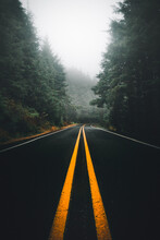 Symmetrical Shot Of Road Amidst Trees And Fog Against Sky