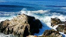 Scenic View As Ocean Waves Crash Against Sandstone Rocks. Cormorants Bask In The Warm Sunlight.