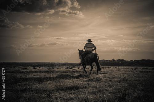 Canvas cavalo crioulo
