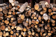 Bunch Of Firewood From Tree Branches To Make Fire In A Furnace