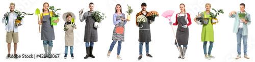 Valokuva Set of gardeners on white background