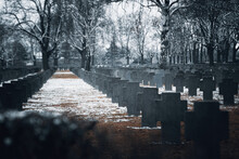 View Of Graves In Cemetery Against Bare Trees