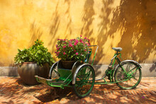 Tricycle Parked By Potted Plants Against Wall In Danang, Vietnam