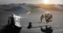 Digital Composite Image Of Elephant Balancing On Rope And Pocket Watch On Wooden Post