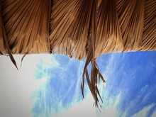 Low Angle View Of Palm Tree Roof Against Sky