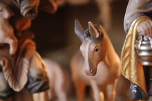 Close-up Of A Horse In Crib