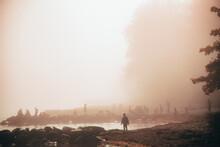 Misty Morning At Beach