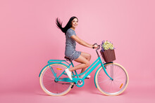 Full Length Body Size Profile Side View Of Attractive Cheerful Girl Riding Vintage Blue Bike Having Fun Isolated On Pink Pastel Color Background